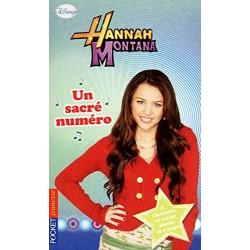 17. Hannah Montana Un sacré...