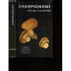 Champignons Atlas illustré...